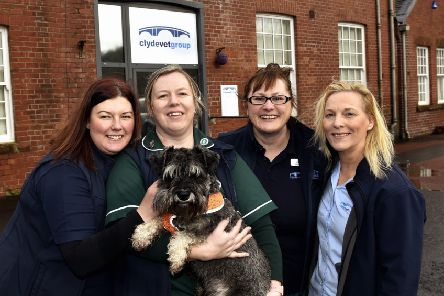 Some of the Clyde Vet team at the new Lesmahagow surgery