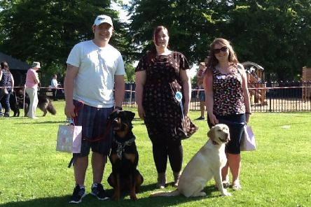 Novelty class winners at a previous Canine Carnival