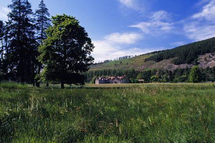 The project at Mar Lodge estate will start in the autumn