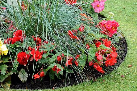 Falkirk Council want community to plant up public flower beds