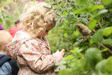 Foraging for food...was a hit with people of all ages last year, with this wee one being able to learn about the trees and plants on her doorstep.