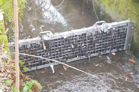Pollution, in the form of items like wet wipes and sanitary products, has returned to the Mary Burn in Lord Ancrum's Wood.