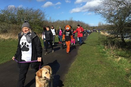The previous Mutt Strut, held in Fife, was a big success. Pic: SSPCA