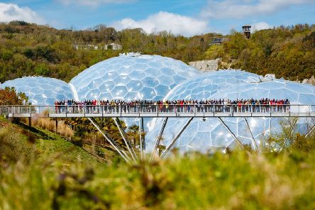 Networking...some 250 Scots have already enjoyed attending camps at the Eden Project and there are now spaces available for community activists in November.