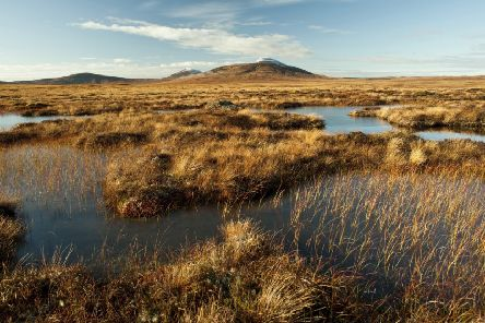 RSPB Forsinard Flows nature reserve, with snow-capped Ben Griam in the distance. Picture: Eleanor Bentall/RSPB