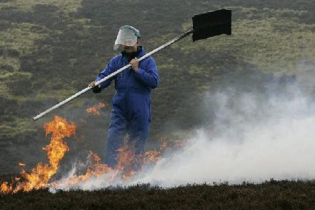 Conservationists have called for the burning of grouse moors to  be banned. Picture: PA