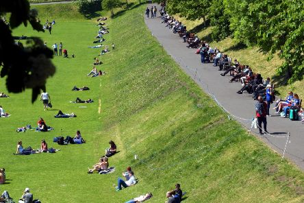 Sun worshippers in Princes Street Gardens, Edinburgh. Picture: Lisa Ferguson/TSPL