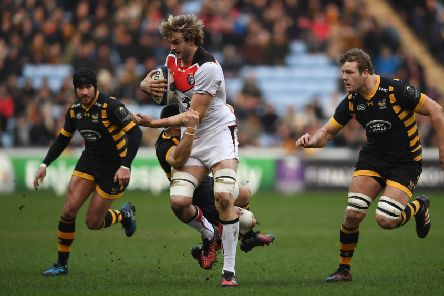 Richie Gray makes a surge during Toulouse's victory over Wasps in this season's European Champions Cup. Picture: Getty.