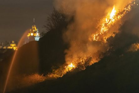 The blaze at Arthur#s Seat earlier in the year. Pic: SWNS