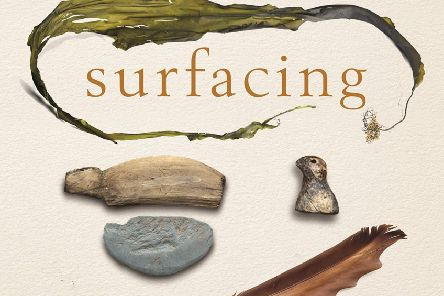Detail from the cover of Surfacing, by Kathleen Jamie