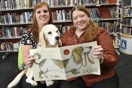 Flora the beagle appears to display a keen interest in this particular book (Picture: Greg Macvean)