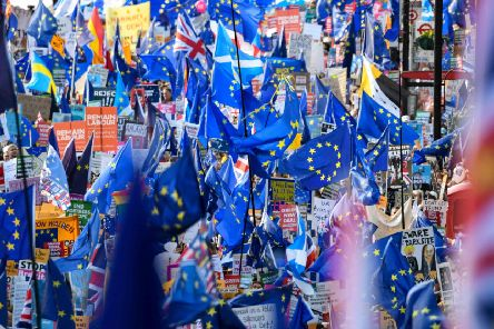 REMAIN: Anti-Brexit protesters create a sea of flags in London (Picture: Niklas Halle'n/AFP/Getty)