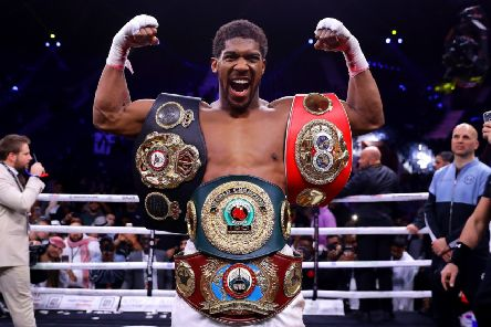 Anthony Joshua gets reacquainted with the IBF, WBA, WBO & IBO World Heavyweight Title belts after his victory over Andy Ruiz Jr in Saudi Arabia. Picture: Richard Heathcote/Getty Images