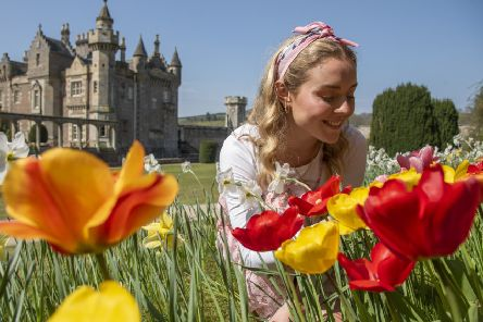 Scotland Sunny Hot weather photographs.''As Scotland and the UK bathes in another day of warm sunshine, Sarah Gerlam from Selkirk is pictured enjoying the lovely weather in the gardens of Abbotsford House, the Home of Sir Walter Scott, near Melrose in the Scottish Borders.''The house is currently running its tulip festival, with gardens filled with colour.''Pic Phil Wilkinson 'info@philspix.com'Tel 07740444373