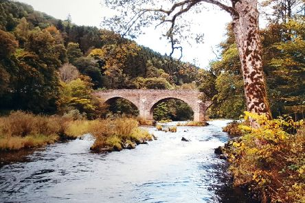 Former Southern Reporter photographer, and exiled Souter David Johnston took this image of Yair Bridge, which is exhibiting strong autumnal colours already.