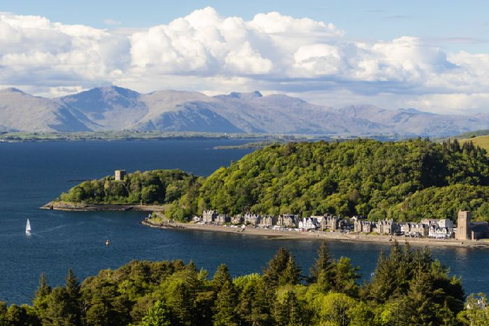 Ancient woodland in Oban added to chain of 'rainforest' sites