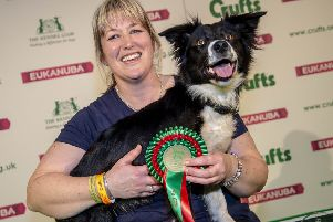 Picture shows Agility British Open Final Winner Medium Heather McLean and Magic , (Thursday 07.03.19) the first day of Crufts 2019 at the NEC, Birmingham. ''For more information please contact the Press Office via: T: 020 7518 1008 / 1020'E: press.office@thekennelclub.org.uk''Free for editorial use image, please credit: BeatMedia''If you require a higher resolution image or you have any other photographic enquiries, please contact BeatMedia on 020 3026 3780 or email hello@beatmediagroup.co.uk