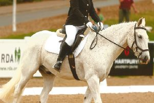 Accomplished rider...Anne Brown from Carron is well-known in RDA circles for her cheeky tattoo but it was her skills that took centre stage at Hartpury.