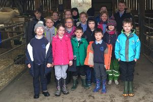 The children from Auchengray Primary enjoying their day out at Almond Valley.