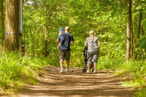 On the trail...the nature reserve in the heart of Clydesdale is no longer a hidden jewel in the crown as more and more people are discovering its treasures. (Pic: Scottish Wildlife Trust).