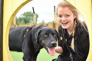Zoe James with Burly, who hopes his time in foster care will improve his chances of finding his forever home. Pic: Kayleigh Docherty