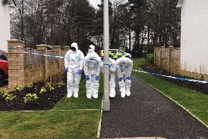 Forensics officers carry out a detailed search in Brunswick Gardens