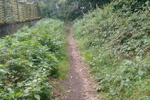 One of the BPA projects is the restoration of the path between Woodside Road and Wilson Road
