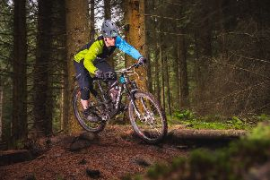 The mountain bike and adventure park is proposed for Durris Forest