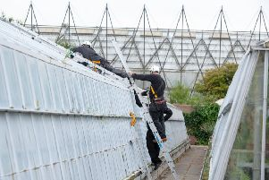 Workmen repair the glass damaged in the research houses.