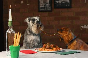 A recreation of the iconic Lady and the Tramp 'spaghetti and meatballs' scene. Pic: Contributed
