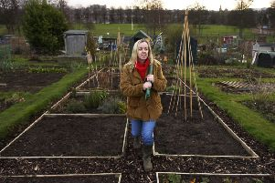 The waiting list for an allotment in Edinburgh is long. Picture: TSPL