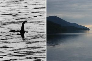 Scientists have today revealed the Loch Ness Monster could be a giant eel.