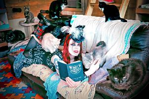 One of the calendar shots 'The Lovecats' features Lindsay Gault and The New Arc cats