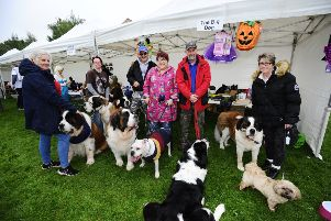 The Big Dog Collections 'On behalf of St Bernard Trust. Pic: Alan Murray