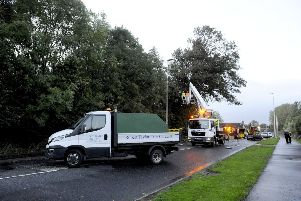 The tree near the Grange Manor Hotel forced the A905 to be closed between Earl's Gate rounabout and Union-Forth Way. Picture Michael Gillen.