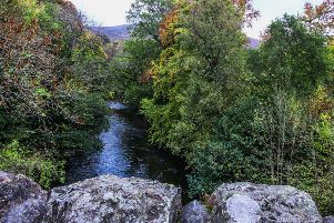 Autumn Colours on the Yarrow Water by Ewan Dickson from Morebattle