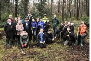 Warout Primary pupils teamed up with Fife Ecology Centre to boost  tree stocks in the local woods. Pic: George McLuskie