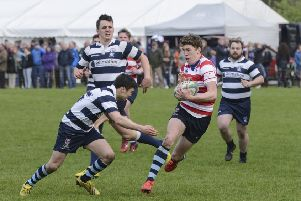 The Howe Sevens is a highlight of the local sporting calendar.