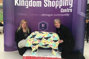 'Harry' the hippo is about to go under the hammer in a one-off charity auction at the Kingdom Shopping Centre.
