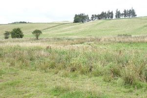 A controversial dog-walking site near Milkieston Toll House at Peebles.