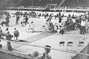 Kirkcaldy & District Canine Club stages its annual dog show at Kirkcaldy Ice Rink in August 1973