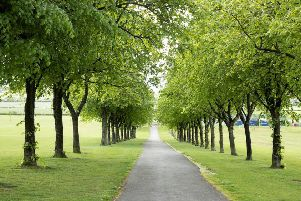 East Renfrewshire Council is consulting on future developments at Cowan Park.