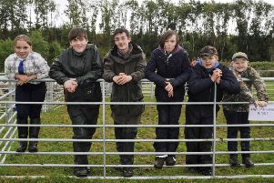 Young handlers at the 2016 show.