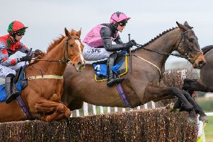 Blue Flight (in pink colours) takes to the air at Kelso earlier this month.