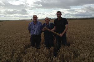 Winner of this year's Royal Northern Agricultural Society crop competition, Fraser Middleton, left, with his father, Jimmy, and son, Scott