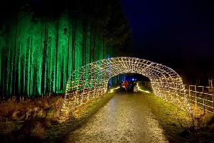 The entrance to Beecraigs Festive Forest event