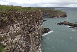 The spectacular cliffs at Fowlsheugh. Picture: RSPB