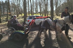 Liam on his outing to Dunnottar Woods with Simon and pony Obama