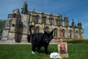 Pic: Rob McDougall'I. ' 'Rosslyn Chapel cat, William, unveils the latest product in the Chapel's gift shop, William's Cat Treats.