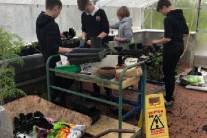 Horticulture classes at Eyemouth High School are proving very popular again.